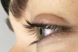 Eye Lash Lift and Tint, and Brow Tinting in Wisbech